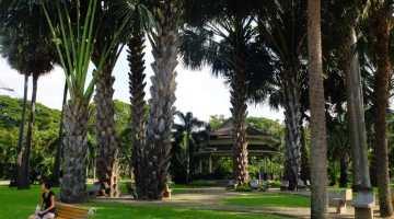 bangkok lumphini park chi