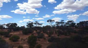 indian pacific perth adelaide landschaft